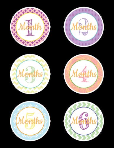 """Baby Age Milestone """"Months 1-6"""" Sticker"""