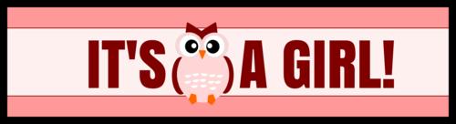 """It's a Girl!"" Owl-Themed Gender Reveal Water Bottle Label"