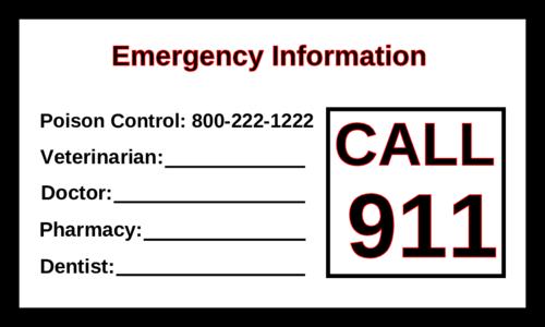 Emergency Information Magnet