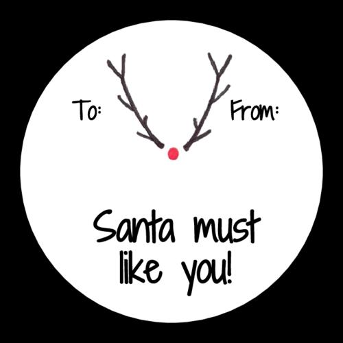 """Santa Must Like You"" Rudolph Gift Tag"