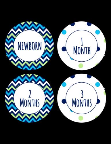 Baby Growth Chevron Polka Dot Sticker Sheet