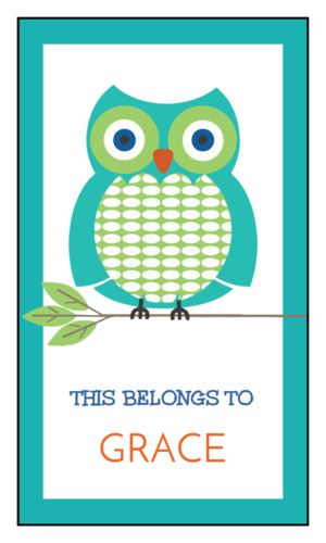 """This Belongs To"" Owl School Supplies Label"