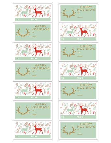 Teal & Gold Holiday Gift Tag Stickers, Assorted