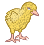 chick1 - coloured