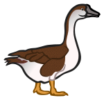 goose2 - coloured