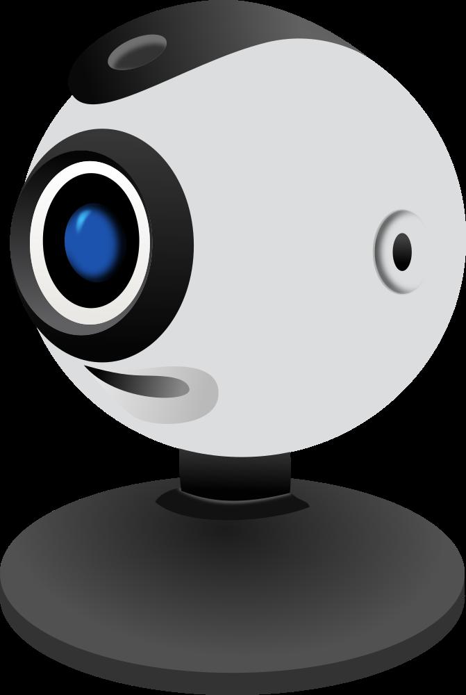 Vivid webcam